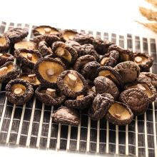 Grade A Rich Nutrition Dried Shiitake Mushroom