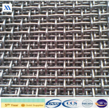 Stainless Steel Crimped Square Wire Mesh (XA-CWM11)