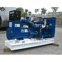 chinese Lovol engine diesel generator