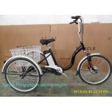 Triciclo Trike PAS Electrico Triciclo Pedelec Triciclo Adulto Triciclo (ETR010)