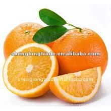 Frische Nabel Orange (süß und lecker)