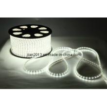 5630/3528 60LED/M 220V 30W LED Bande Flexible Haute Tension