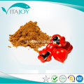 Guarana Extract poeder
