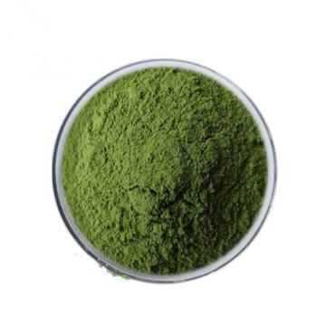 New Crop Dehydrated Parsley Powder