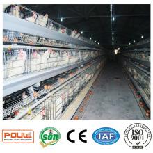 Bester Preis Geflügelfarm Ei Schicht Hühnerkäfige