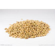 manufacture Soy Bean Extract Natural Non-Gmo 40% Soy Isoflavones