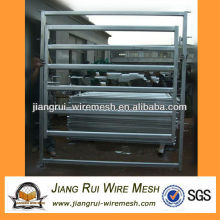 livestock gate to Australia market