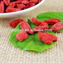 Hersteller Versorgung Goji Beere Extrakt Bio Goji Beeren Wolfberry Mispel