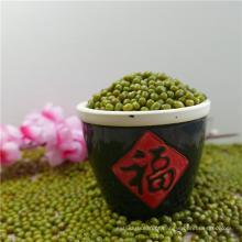 Moong 2017 novo de Mung do verde feijão de Mung dal venda