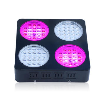 Hydroponika Growing System Grow Light