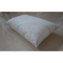 Evolon Pyhsics Anti-Mite Pillow