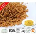 Polvo 100% natural del extracto de la semilla de la alholva de la alta calidad 4-hydroxyisoleucine el 98% en bulto