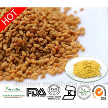 100% Natural High Quality Fenugreek Seed Extract Powder 4-hydroxyisoleucine 5% in Bulk