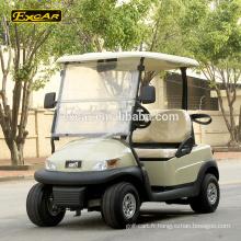 Chariot de golf électrique de luxe de 2 places Chariot de golf de voiture de buggy de club de batterie de Trojan