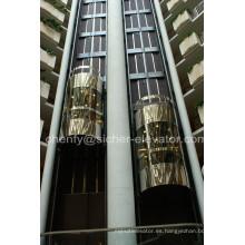 Elevador panorámico de la cabina de vidrio al aire libre de Srh