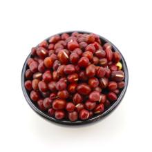 Neue Farbe der roten kleinen Bohne adzuki Bohne neue