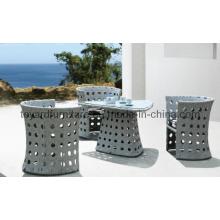 Rattan Furniture Set Patio Garden Wicker Dining Table Chair (F862)