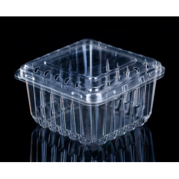 Clear Sqare Fruit Box