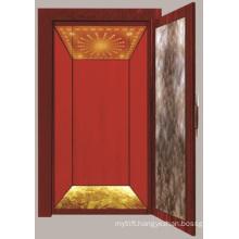 Aksen Fastion Model Home Elevator Villa Elevator Mrl
