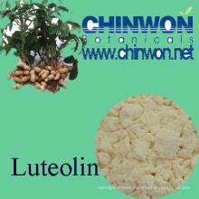Hepatitis Treating Arachis Hypogaea Extract Luteolin 98%