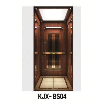 Ascenseur de villa avec acier inoxydable fini en bois et en titane (KJX-BS04)