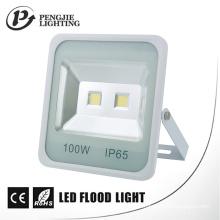 Projecteur carré d'ÉPI LED de 100W pour le CE extérieur, RoHS