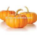 Organic Dehydrated Pumpkin Powder
