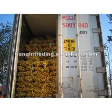 fournisseur de taro frais