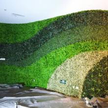 Pantalla de privacidad de imitación de hiedra al aire libre de decoración con seto artificial