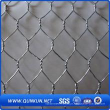 Melhor Produto Hexagonal Wire Mesh