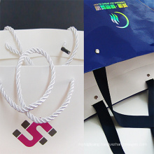Wholesale Printed Shopping Gift Paper Bag with Handle