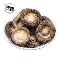 Chinese bulk dried shiitake mushroom Wholesale