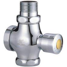 Försenad-tid toalett Flushometers