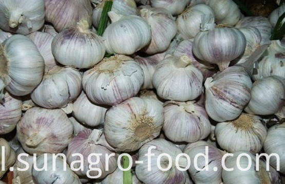 Lots of garlic