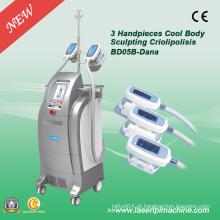 Máquina de emagrecimento Cryo Fat Cryo Free para Venda Bd05b