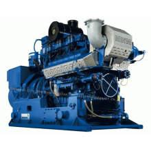 Grupo de generador de energía del motor de gas Mwm (400kw-800kw)