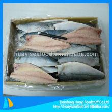 Filet de maquereau de filets de poisson frais congelés de haute qualité