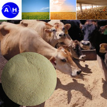 Amino Acid Powder for Feed Additive Poultry