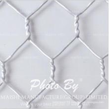 Chicken Wire Netting/Bird Poultry Net