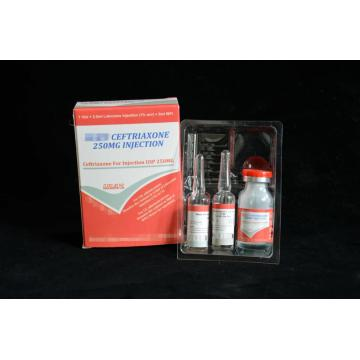 Ceftriaxone Sodium for Injection BP 250MG