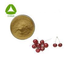 Amarelle Prunus Cerasus Sour Cherry Extract Powder
