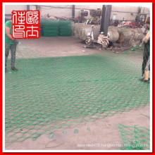 PVC coated blue color Hexagonal wire mesh(factory high quality low price)