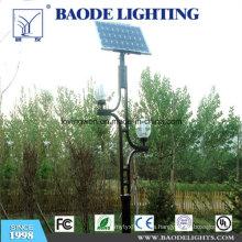 Luz de calle solar de la turbina de viento de 8m poste 80W LED (BDTYN880-w)