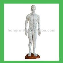 Body de acupuntura humano chinês Pontos 50cm Modelo de acupuntura
