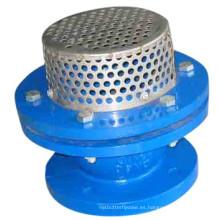 Válvula de pie de hierro fundido Pn10