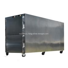 Hospital Medical Mortuary Freezer Two Corpse Body freezer Instrumnets