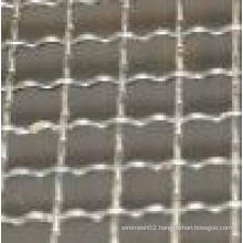 Hot Sale High Quality and Cheap Crimped Wire Mesh (TYC-27)