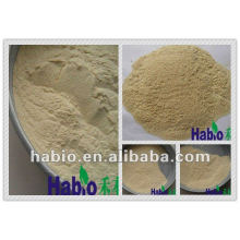poultry Feed Additive Xylanase Enzyme
