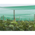 Excellent quality protection new pe against bird net