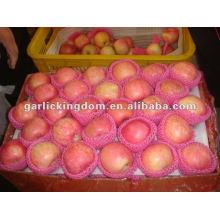 138-198 18kg yantai fresco manzana fuji